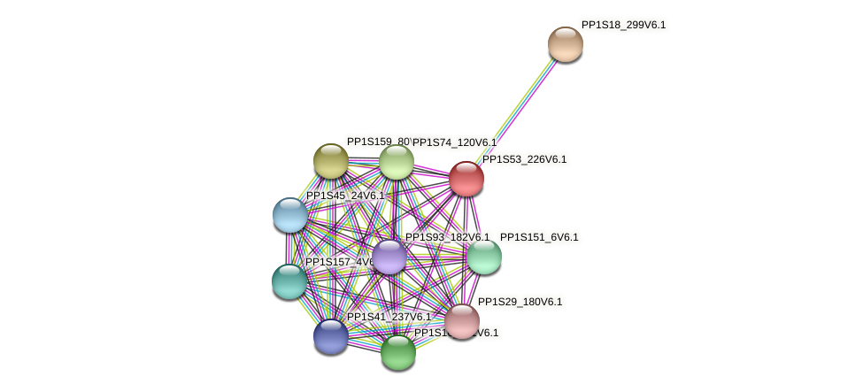PP1S53_226V6.1 protein (Physcomitrella patens) - STRING interaction network