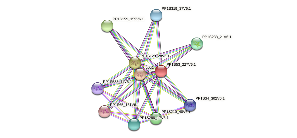 PP1S53_227V6.1 protein (Physcomitrella patens) - STRING interaction network