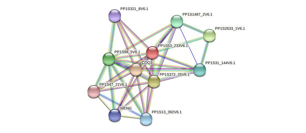 PP1S53_233V6.1 protein (Physcomitrella patens) - STRING interaction network