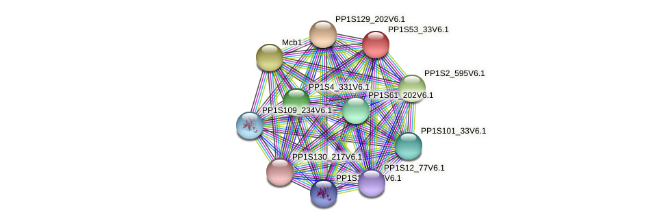 PP1S53_33V6.1 protein (Physcomitrella patens) - STRING interaction network