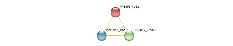 PP1S53_4V6.1 protein (Physcomitrella patens) - STRING interaction network