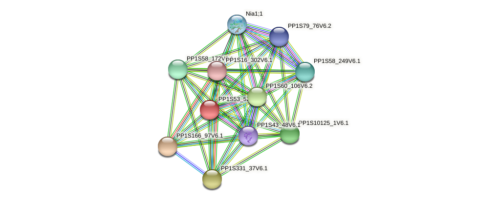 PP1S53_52V6.1 protein (Physcomitrella patens) - STRING interaction network