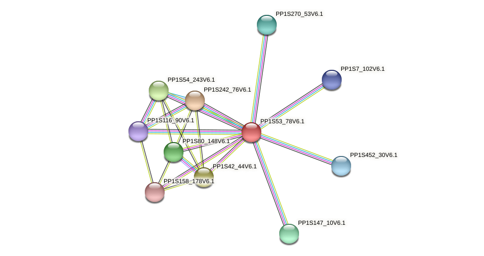 PP1S53_78V6.1 protein (Physcomitrella patens) - STRING interaction network