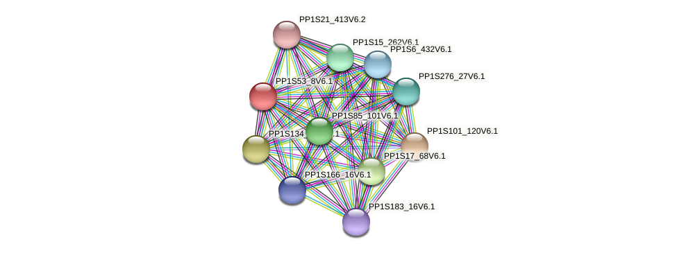 PP1S53_8V6.1 protein (Physcomitrella patens) - STRING interaction network