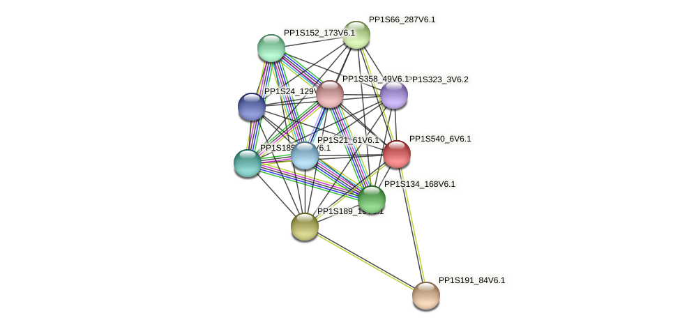 PP1S540_6V6.1 protein (Physcomitrella patens) - STRING interaction network