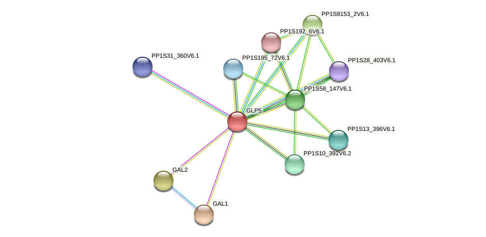 GLP5 protein (Physcomitrella patens) - STRING interaction network