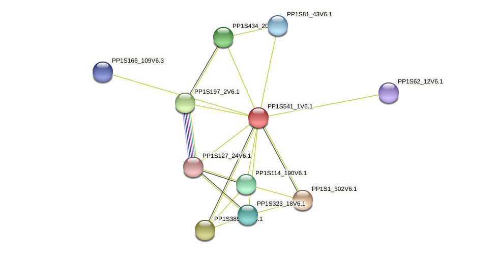 PP1S541_1V6.1 protein (Physcomitrella patens) - STRING interaction network