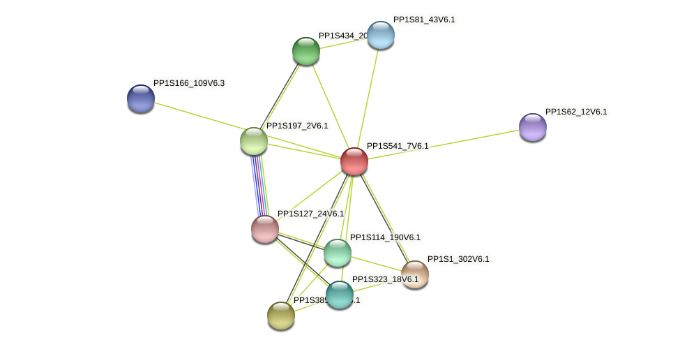 PP1S541_7V6.1 protein (Physcomitrella patens) - STRING interaction network