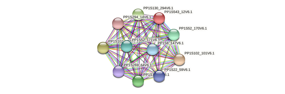 PP1S543_12V6.1 protein (Physcomitrella patens) - STRING interaction network