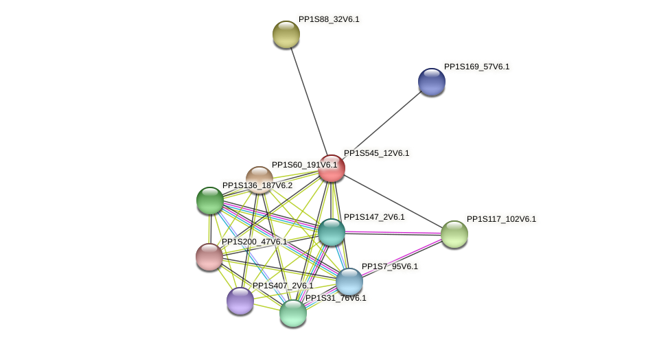 PP1S545_12V6.1 protein (Physcomitrella patens) - STRING interaction network