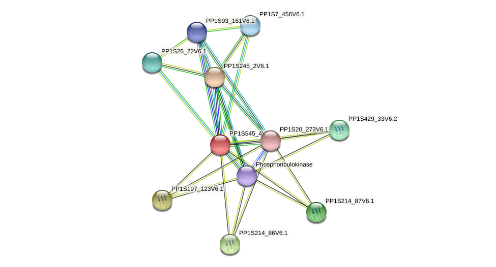 PP1S545_4V6.1 protein (Physcomitrella patens) - STRING interaction network