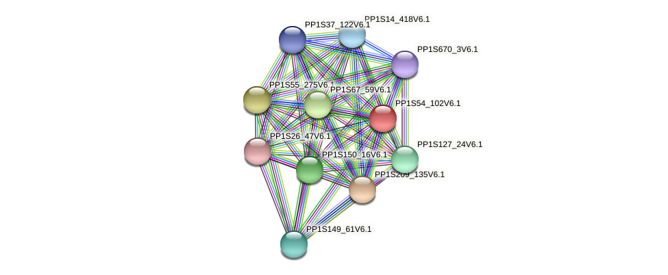 PP1S54_102V6.1 protein (Physcomitrella patens) - STRING interaction network