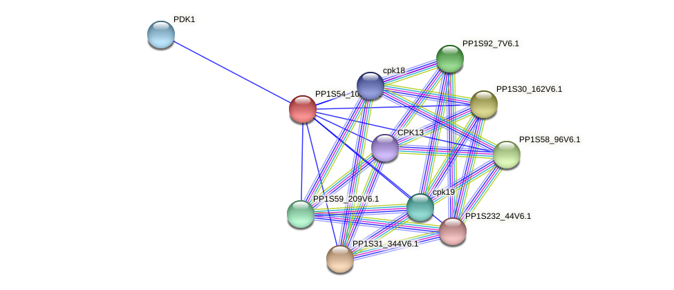 PP1S54_105V6.1 protein (Physcomitrella patens) - STRING interaction network