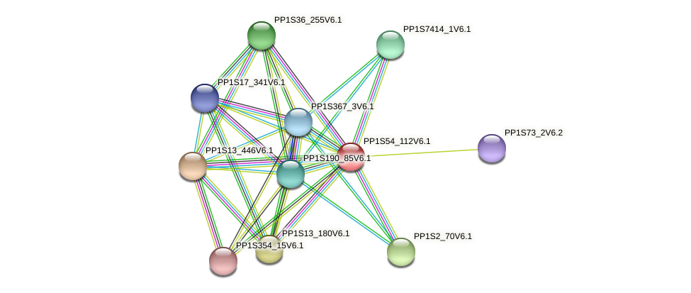 PP1S54_112V6.1 protein (Physcomitrella patens) - STRING interaction network