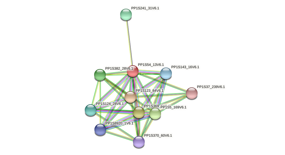 PP1S54_13V6.1 protein (Physcomitrella patens) - STRING interaction network
