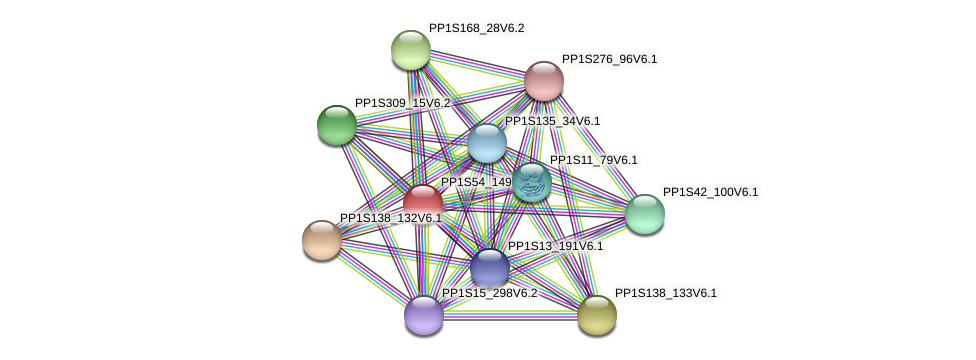 PP1S54_149V6.1 protein (Physcomitrella patens) - STRING interaction network