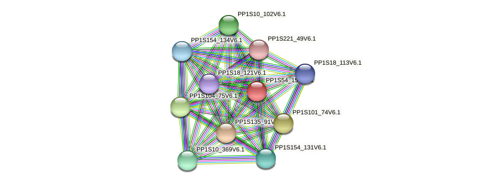 PP1S54_157V6.1 protein (Physcomitrella patens) - STRING interaction network