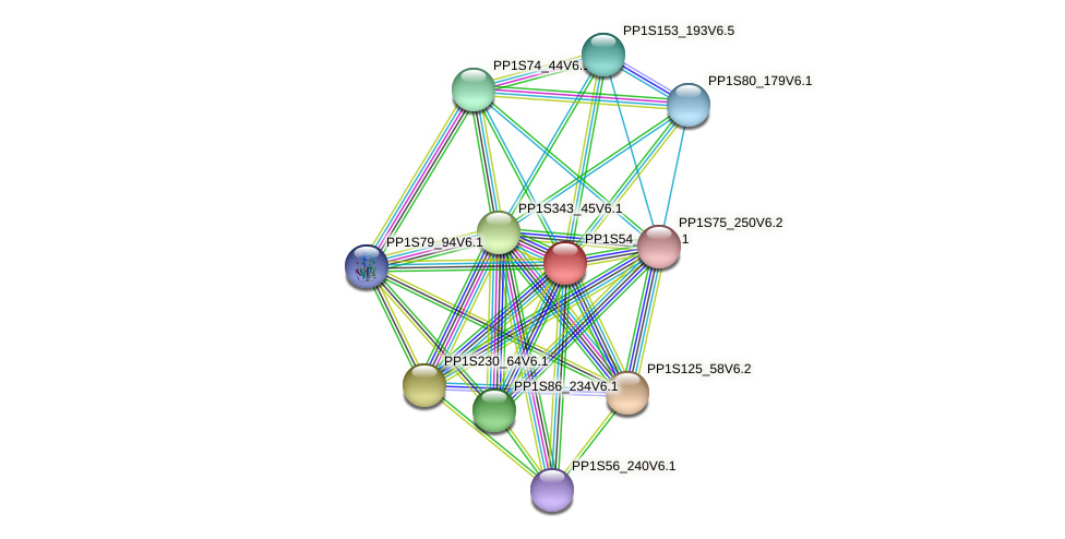 PP1S54_206V6.1 protein (Physcomitrella patens) - STRING interaction network