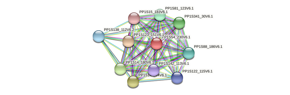 PP1S54_230V6.1 protein (Physcomitrella patens) - STRING interaction network