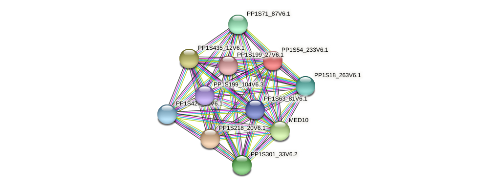 PP1S54_233V6.1 protein (Physcomitrella patens) - STRING interaction network