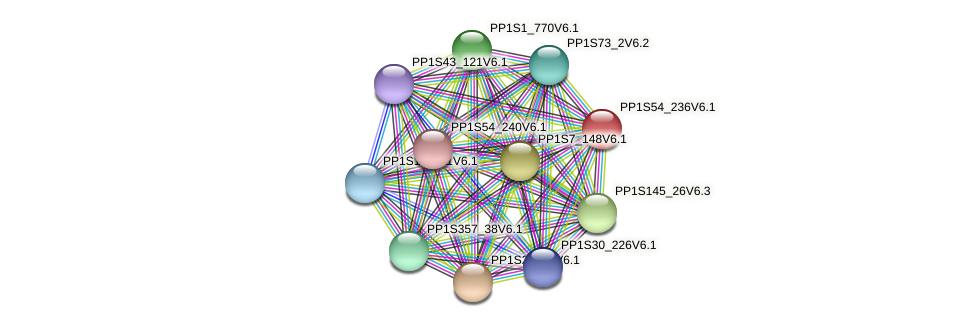 PP1S54_236V6.1 protein (Physcomitrella patens) - STRING interaction network