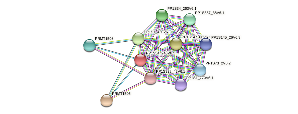 PP1S54_240V6.1 protein (Physcomitrella patens) - STRING interaction network