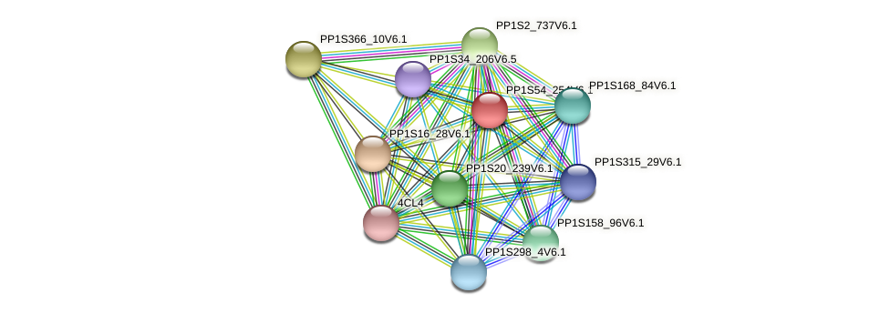 PP1S54_254V6.1 protein (Physcomitrella patens) - STRING interaction network
