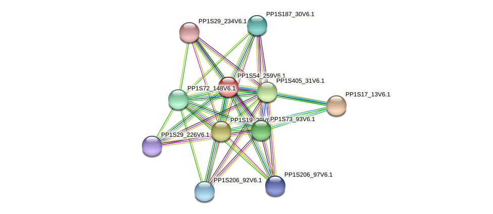 PP1S54_259V6.1 protein (Physcomitrella patens) - STRING interaction network