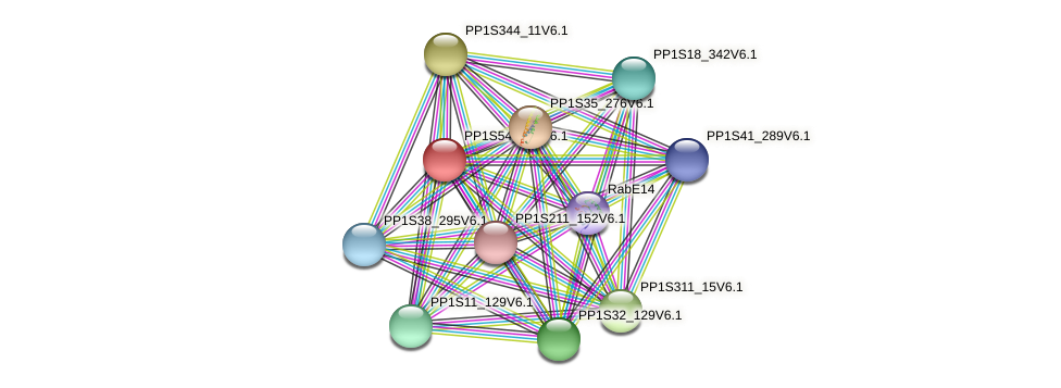 PP1S54_260V6.1 protein (Physcomitrella patens) - STRING interaction network