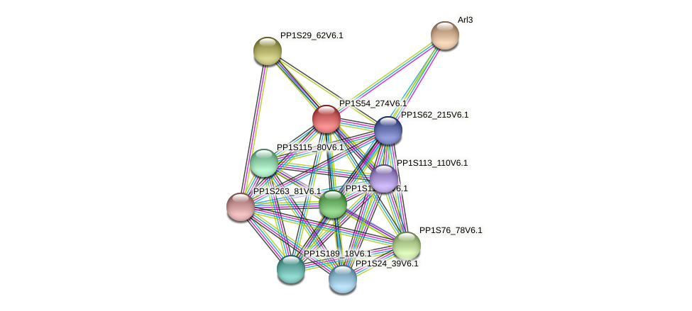 PP1S54_274V6.1 protein (Physcomitrella patens) - STRING interaction network