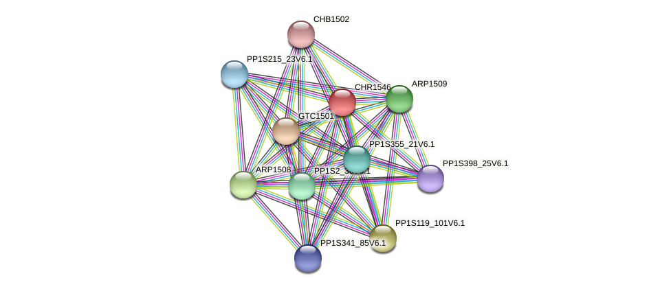 CHR1546 protein (Physcomitrella patens) - STRING interaction network