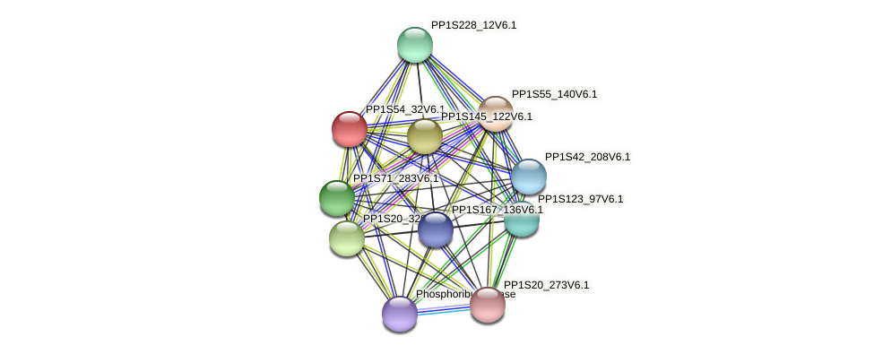 PP1S54_32V6.1 protein (Physcomitrella patens) - STRING interaction network