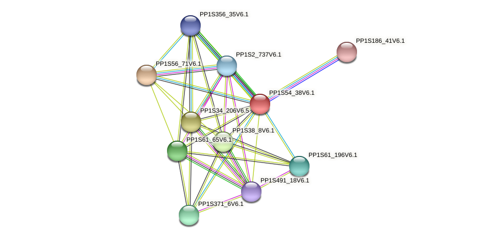 PP1S54_38V6.1 protein (Physcomitrella patens) - STRING interaction network