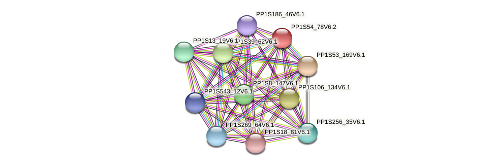 PP1S54_78V6.2 protein (Physcomitrella patens) - STRING interaction network