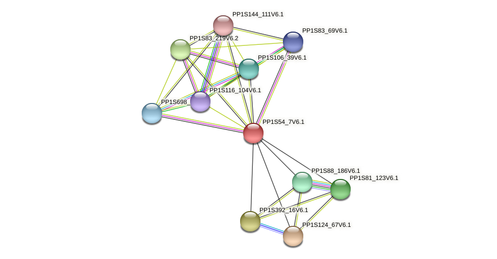 PP1S54_7V6.1 protein (Physcomitrella patens) - STRING interaction network