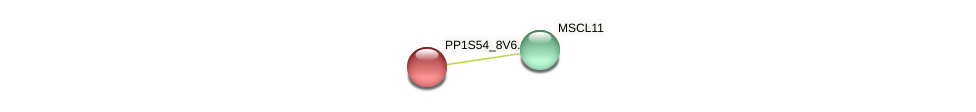 MSCL15 protein (Physcomitrella patens) - STRING interaction network