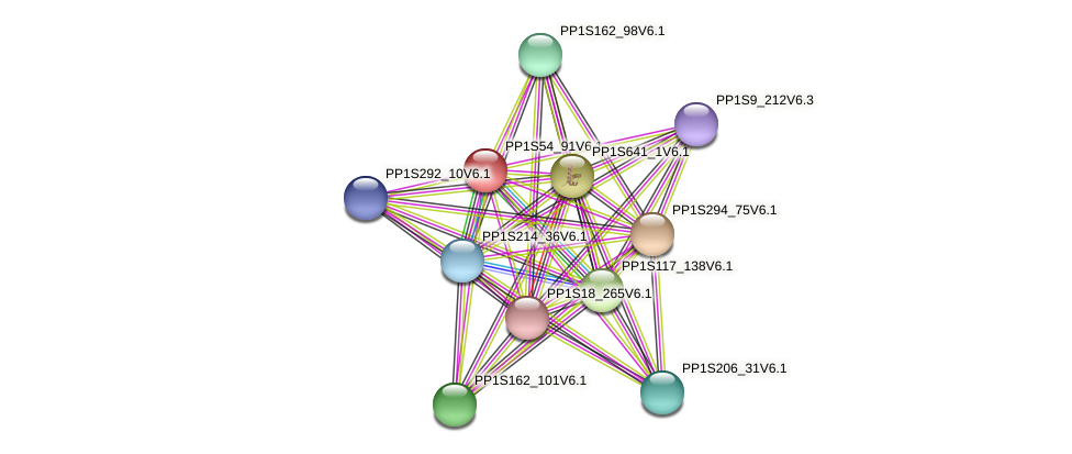 PP1S54_91V6.1 protein (Physcomitrella patens) - STRING interaction network