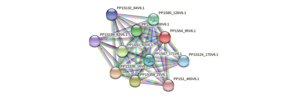 PP1S54_95V6.1 protein (Physcomitrella patens) - STRING interaction network