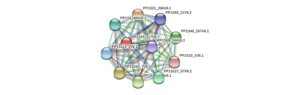 PP1S55_117V6.1 protein (Physcomitrella patens) - STRING interaction network