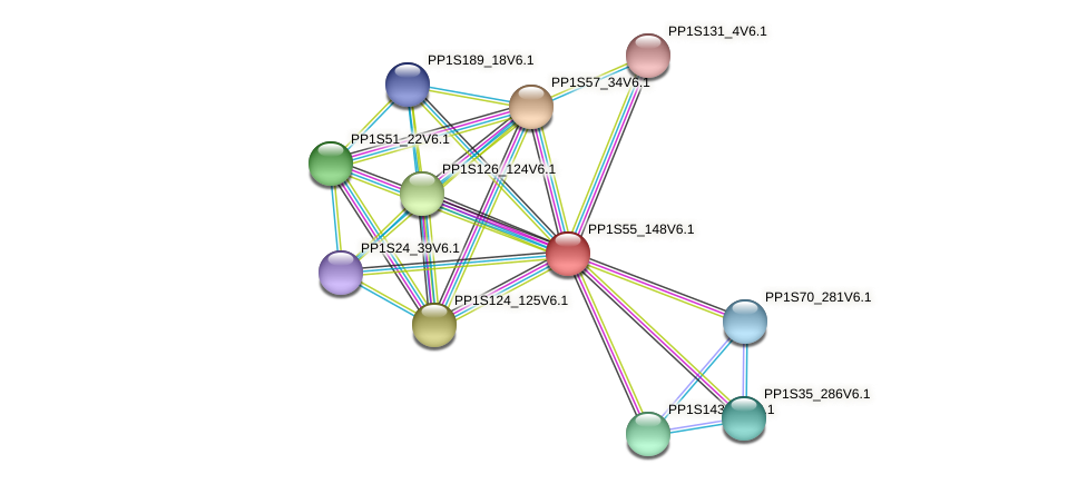 PP1S55_148V6.1 protein (Physcomitrella patens) - STRING interaction network