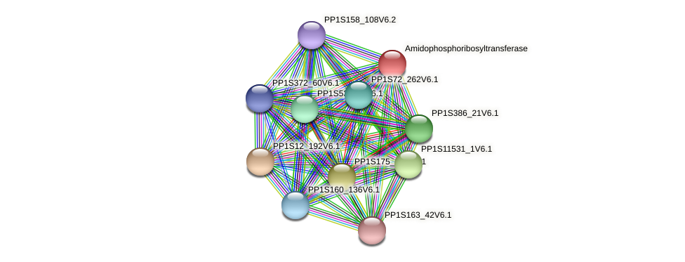 PP1S55_196V6.1 protein (Physcomitrella patens) - STRING interaction network