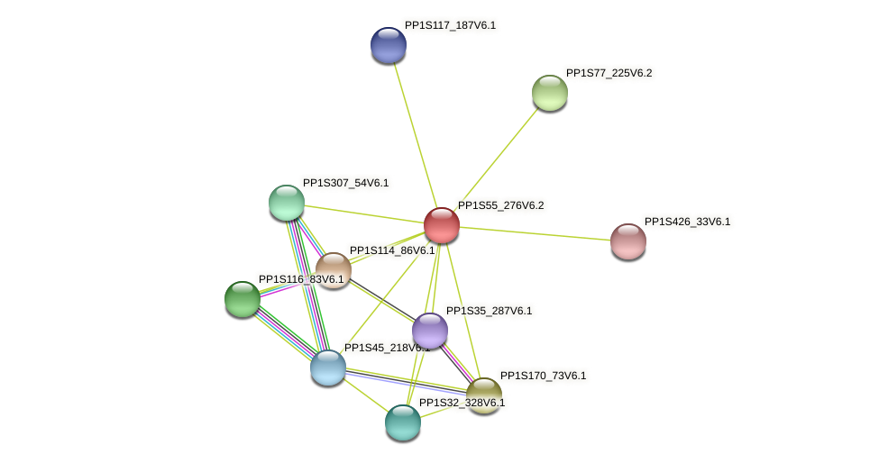 PP1S55_276V6.2 protein (Physcomitrella patens) - STRING interaction network