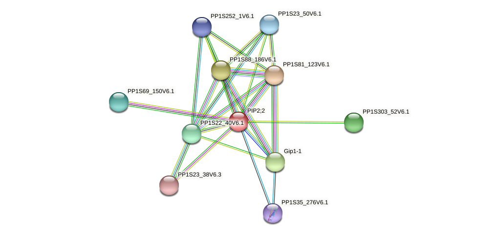 PP1S55_301V6.1 protein (Physcomitrella patens) - STRING interaction network