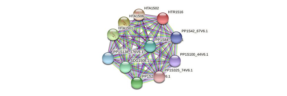 HTR1516 protein (Physcomitrella patens) - STRING interaction network