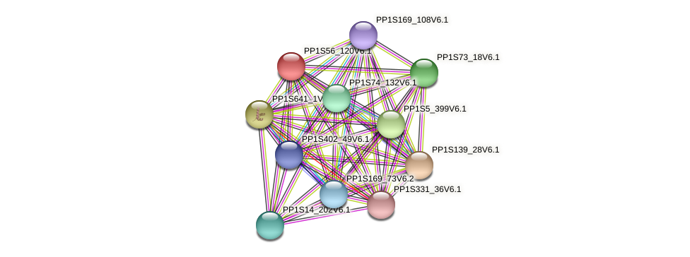 PP1S56_120V6.1 protein (Physcomitrella patens) - STRING interaction network