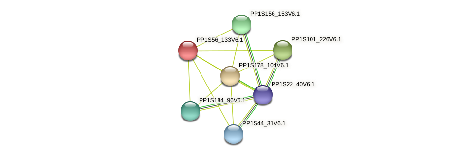 PP1S56_133V6.1 protein (Physcomitrella patens) - STRING interaction network