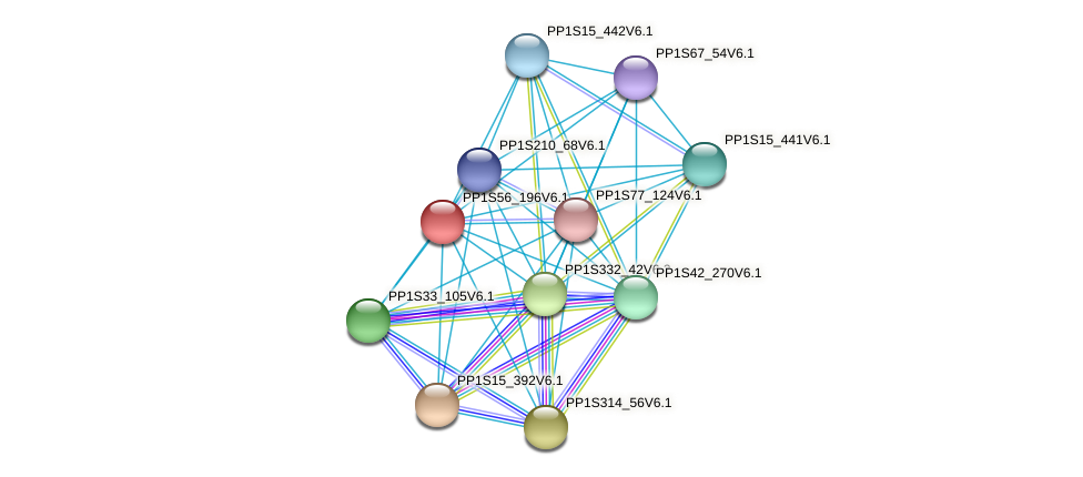 PP1S56_196V6.1 protein (Physcomitrella patens) - STRING interaction network