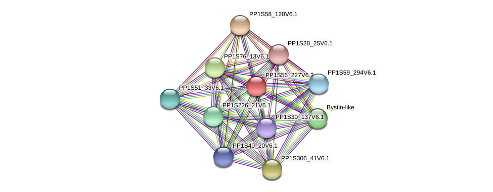 PP1S56_227V6.1 protein (Physcomitrella patens) - STRING interaction network