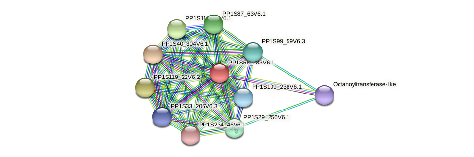 PP1S56_233V6.1 protein (Physcomitrella patens) - STRING interaction network