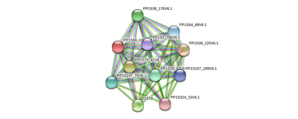 PP1S56_242V6.1 protein (Physcomitrella patens) - STRING interaction network